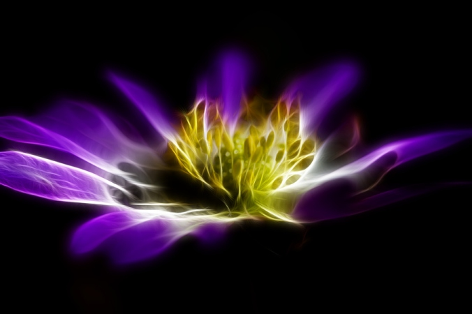 The Purple Flame Decrees are Here: A Message from St. Germain and the Transition Team, Delivered by Giselle Koy