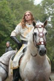 Close_up_Knight_on_Horse